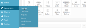 Wodpress Primer Install Theme