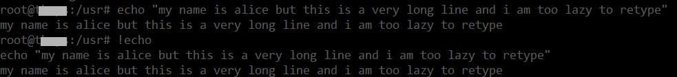 echo linux command