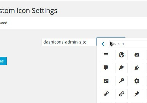 CPT Custom Icon Settings